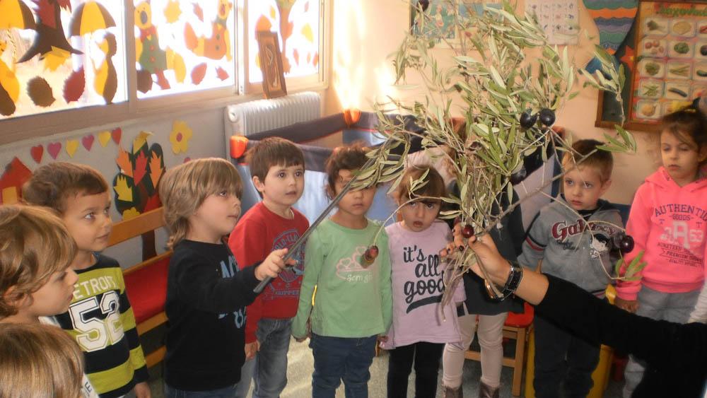 Εκπαιδευτικό πρόγραμμα  στο τμήμα  JUNIORS του Νηπιαγωγείου με θέμα «Ελιά- λάδι το υγρό χρυσάφι»